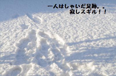 005_convert_20120124205726.jpg