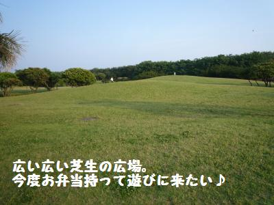 006_convert_20110606132528.jpg