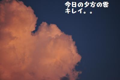 006_convert_20110705204559.jpg