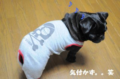007_convert_20111021213656.jpg