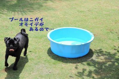 009_convert_20110621214132.jpg