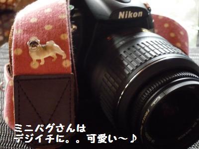010_convert_20110906200142.jpg