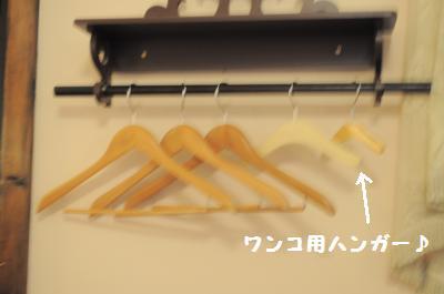 010_convert_20120104185710.jpg