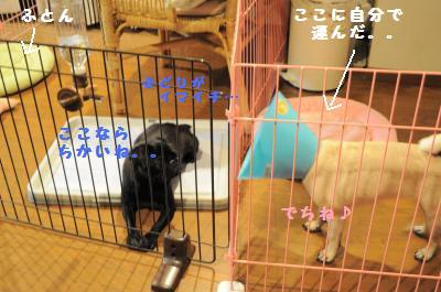 022_convert_20110714234100.jpg