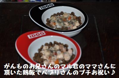 024_convert_20110621214640.jpg