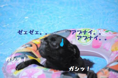 024_convert_20110816233255.jpg