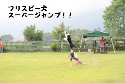 024_convert_20110921233230.jpg