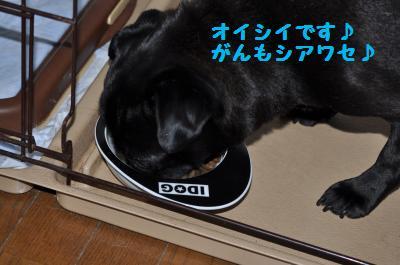 025_convert_20110621214815.jpg