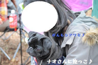 029_convert_20111105005231.jpg