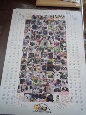029_convert_20111213092007.jpg