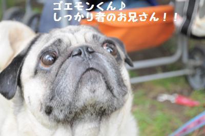 031_convert_20110607090613.jpg