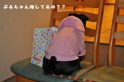 032_convert_20111122150449.jpg