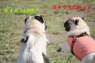 036_convert_20111005011300.jpg