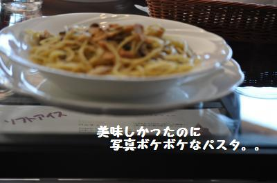 049_convert_20111219231406.jpg