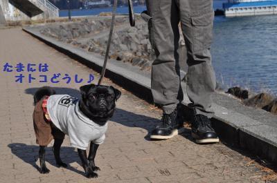 052_convert_20120104191007.jpg
