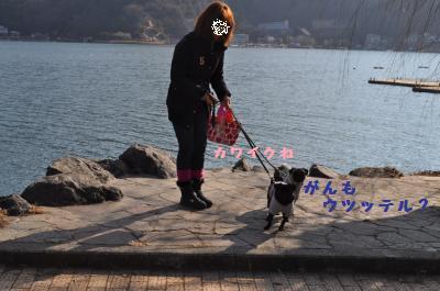 054_convert_20120104193422.jpg