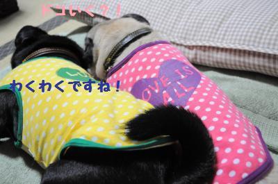 057_convert_20110930220325.jpg