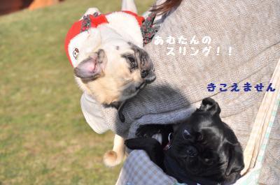 070_convert_20111220202735.jpg