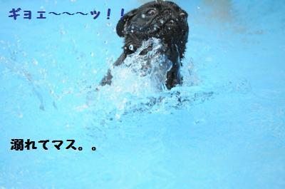 072_convert_20110816234811.jpg