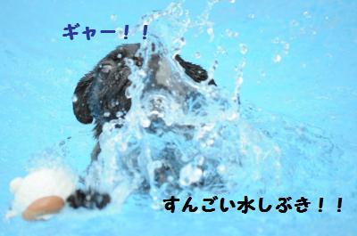 077_convert_20110816235053.jpg