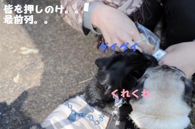 107_convert_20111011190151.jpg