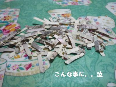 122_convert_20111227183920.jpg