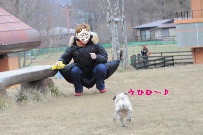 129_convert_20120120200444.jpg