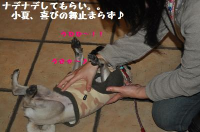 146_convert_20111123224519.jpg