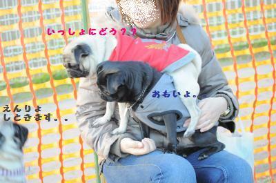 220_convert_2011123015174.jpg