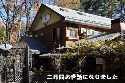 438_convert_20111128214345.jpg