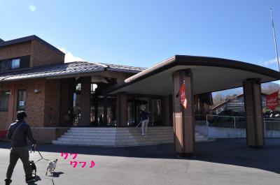 439_convert_20111128214435.jpg