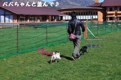 495_convert_20111128215903.jpg