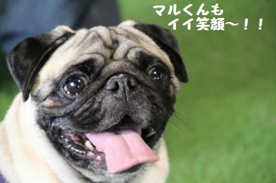 dousoukai+maru_convert_20111025230821.jpg