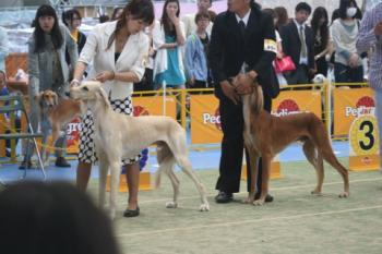 chubuFCI 20100606_20