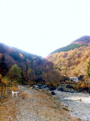 20101124_5.jpg