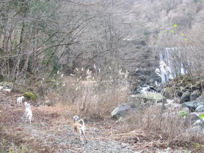 20101215_4.jpg