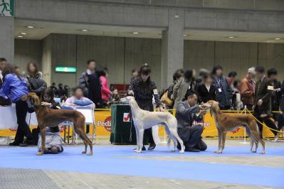 Tokyo_20101219_6.jpg