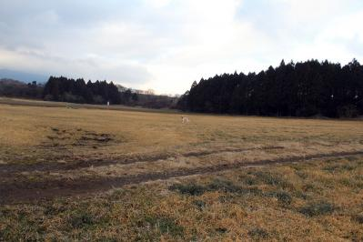 asagiri20100111_IMG_0009.jpg