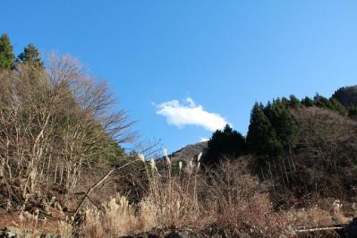 tanzawa20101223_IMG_0447.jpg