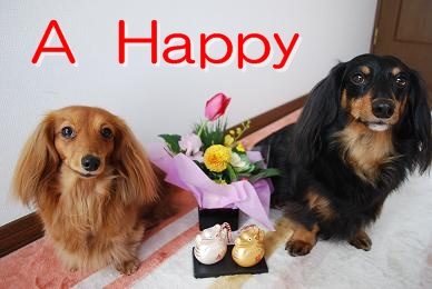 A Happy
