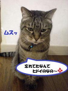 ①ルーク1