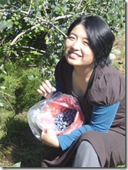 blueberry picking 015