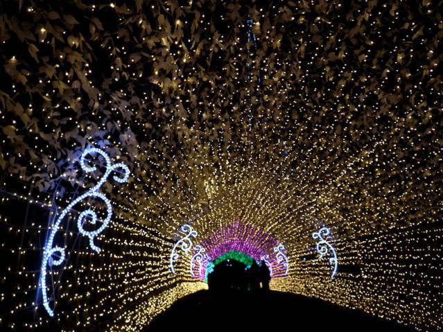 光のトンネル(2)