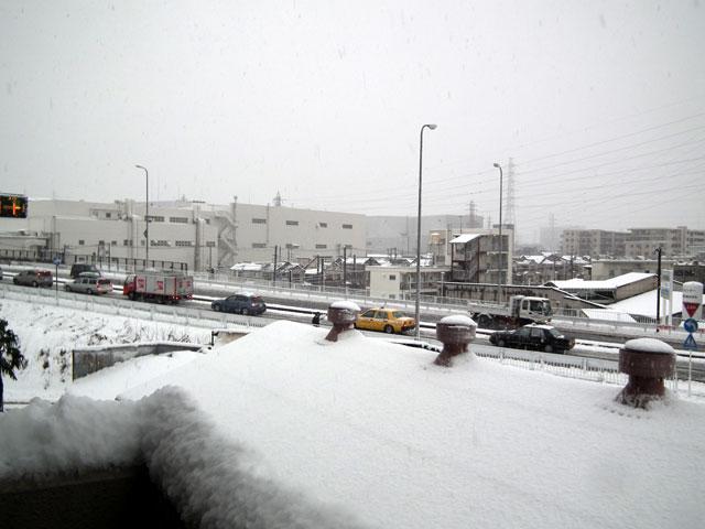 国道側の雪