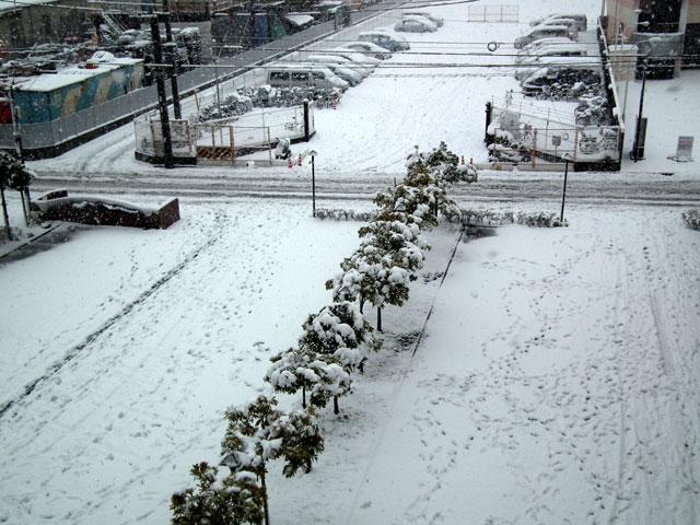 駐車場側の雪