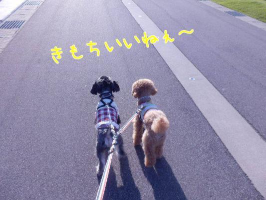 ひるんぽ4