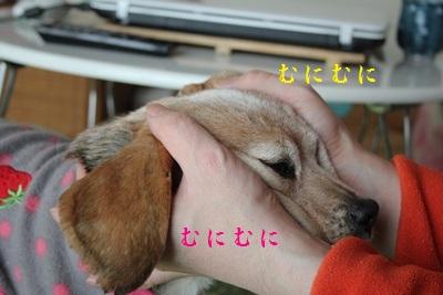ai-20130105-oheya03.jpg