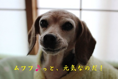 ai-20130201-oheya01.jpg