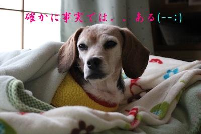 ai-20130212-oheya04.jpg