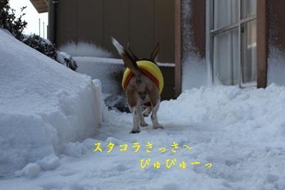 ai-20130223-oniwa05.jpg